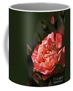 Coffee Mug featuring the photograph Beauty Of Rose by Joy Watson