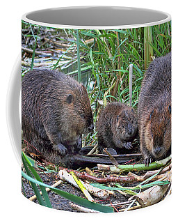Coffee Mug featuring the photograph Beaver Family by Peggy Collins