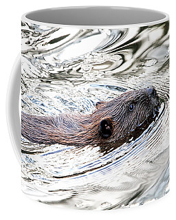 Coffee Mug featuring the photograph Beaver Swimming In A Pond by Peggy Collins
