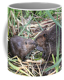 Coffee Mug featuring the photograph Beavers Kissing by Peggy Collins