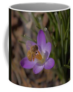 Bee And Crocus 3 Coffee Mug