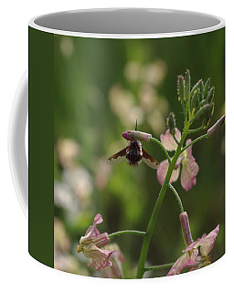 Coffee Mug featuring the photograph Pink Mustard Flower by Adria Trail