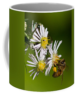 Bee Harvest Coffee Mug