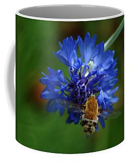 Coffee Mug featuring the photograph Bee by Leticia Latocki