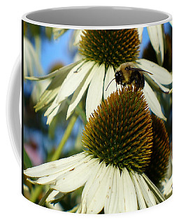 Coffee Mug featuring the photograph Bee On A Cone Flower by Lingfai Leung