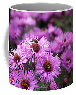 Coffee Mug featuring the photograph Bee On A Daisy by Susan Leonard