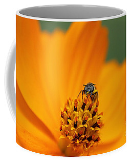 Coffee Mug featuring the photograph Bee On Cosmo by Lisa L Silva