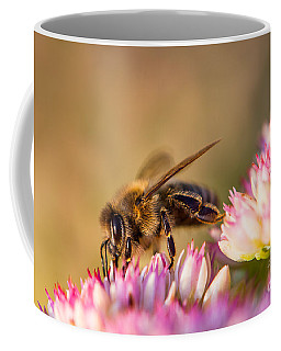 Bee Sitting On Flower Coffee Mug