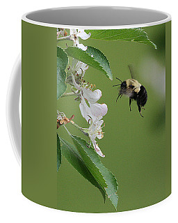 Bee With Apple Blossoms Coffee Mug