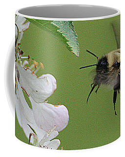 Coffee Mug featuring the photograph Bee With Apple Blossoms by William Selander