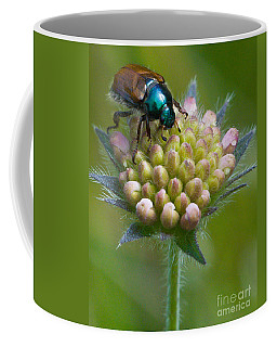 Beetle Sitting On Flower Coffee Mug
