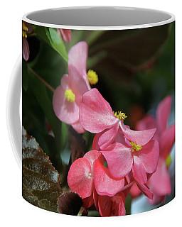 Begonia Beauty Coffee Mug by Ed  Riche