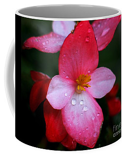 Begonia Coffee Mug by Hazel Holland