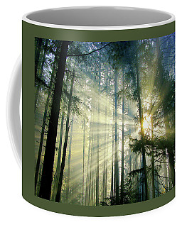 Behold The Light In The Fall Forest Coffee Mug