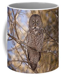 Being Observed Coffee Mug
