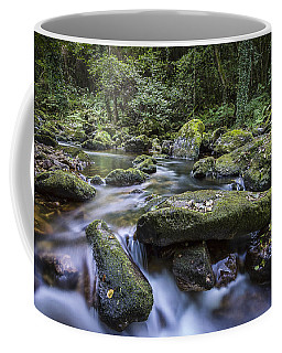 Coffee Mug featuring the photograph Belelle River Neda Galicia Spain by Pablo Avanzini