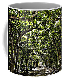 Coffee Mug featuring the photograph Believes ... by Juergen Weiss