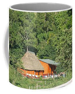 Belize House Coffee Mug