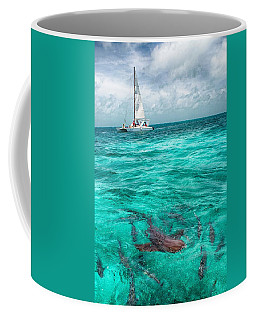 Belize Turquoise Shark N Sail  Coffee Mug