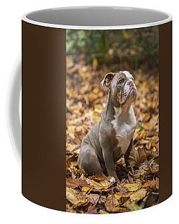 Bella Coffee Mug