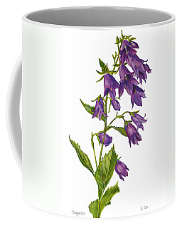 Bellflower - Campanula Coffee Mug