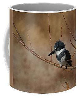 Belted Kingfisher Coffee Mug
