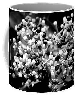 Berries Coffee Mug by Clare Bevan