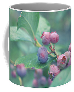 Coffee Mug featuring the photograph Berries For You by Rachel Mirror