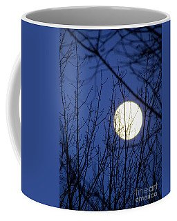 Beware The Ides Of March Coffee Mug