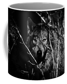 Beware The Woods Coffee Mug by Wes and Dotty Weber