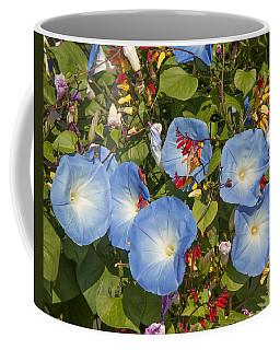 Bhubing Palace Gardens Morning Glory Dthcm0433 Coffee Mug