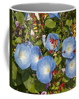 Bhubing Palace Gardens Morning Glory Dthcm0433 Coffee Mug
