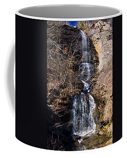 Big Bradley Falls 2 Coffee Mug