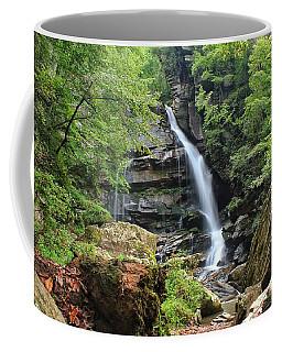 Big Bradley Falls Coffee Mug