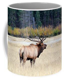 Big Colorado Bull Coffee Mug