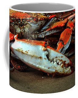 Coffee Mug featuring the photograph Big Crab Claw by Bill Swartwout