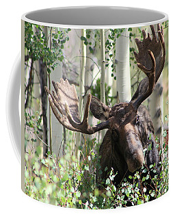 Big Daddy The Moose 3 Coffee Mug by Fiona Kennard