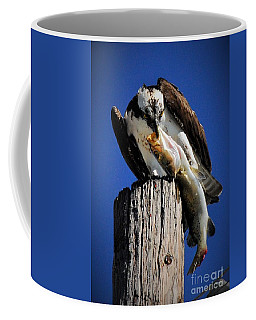 Big Fish Coffee Mug by Quinn Sedam