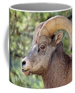 Coffee Mug featuring the photograph Big Horn by Lynn Sprowl