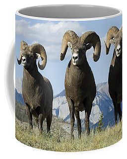 Big Horn Sheep Coffee Mug by Bob Christopher