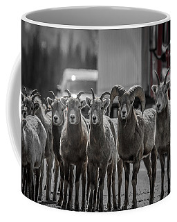 Big Horn Sheep Road Block Coffee Mug