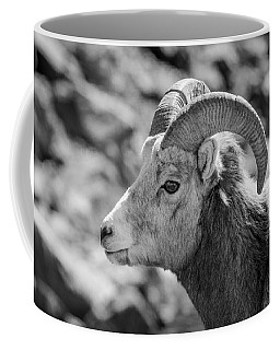 Big Horn Sheep Profile Coffee Mug