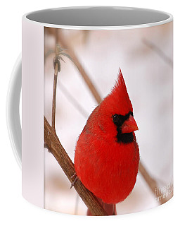 Coffee Mug featuring the photograph Big Red  Cardinal Bird In Snow by Peggy Franz