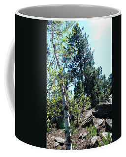 Coffee Mug featuring the photograph Birch Trees by Dany Lison