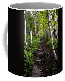 Birch Woods Hike Coffee Mug