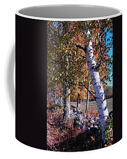 Coffee Mug featuring the photograph Birches by Mim White