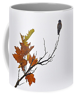 Bird Of Autumn Coffee Mug by AJ  Schibig