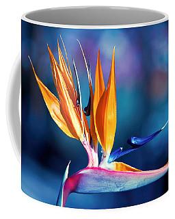 Coffee Mug featuring the photograph Bird Of Paradise by Gunter Nezhoda