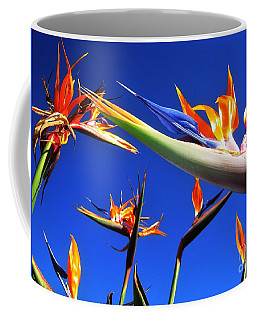 Bird Of Paradise Rises Coffee Mug