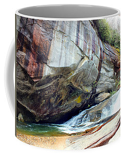 Birdrock Waterfall In Spring Coffee Mug
